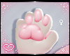 .ˋ✧ Furry Paws ✧ˊ.