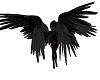 Red Hot Demon Quad wings