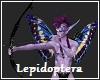 Lepidoptera Elf Bow