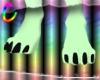 C; Canine Feet M