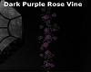 D/Purple Rose Vine