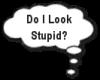 do I look stupid