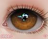 視線. Chestnut.