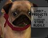 My Pug [Belge] ♦