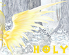 Gold & Silver Soft Wing