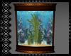 Elegant Fish Tank