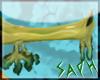 [SG] Leafy Dragon Nose