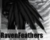 TatteredRavenTFeathersV2