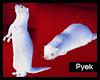 Ferret white v2