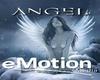 angle fly and poses