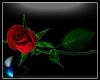 |IGI| Rose v2