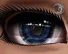 Indigo Queen Eyes