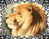 Lion Furry Tail