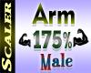 Arm Resizer 175%