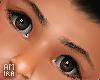 Boy eyebrows