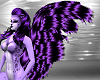 purple furry F tail