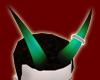 Halo Horns