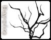 :Dead Branch
