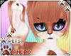 [Pets] Cinda | andro fur