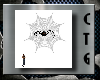 CTG SPIDER AND WEB ANIM.