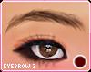 ♡ Brows V2 l brown