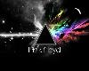 Pink Floyd Tube Top
