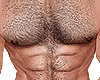 Hairy Body For Man