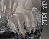 . feline fur   claws