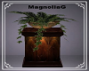 ~MG~ Plant N Stand
