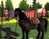 LWR}Nature:Horse
