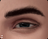 !! Van  Eyebrows I