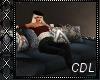 !C* B Blue Sofa + Lights