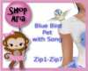 Zippity Do Dah Song Bird