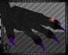 Furry  Paws (M)
