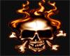 FlameSkull Shoe F