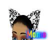 Hazey ears 1