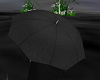 Umbrella Avatar