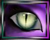 DR eyes