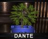 Derivable Planter