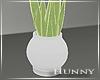 H. Snake Plant