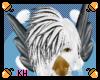 Pied Hair V1