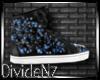 D: Christian Lou Sneaker