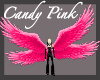 Candy Pink Wings