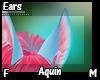 Aquin Ears