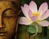 Buddah & Lotus Canvas