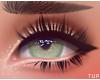 ; Kitten Eyelashes Black