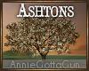 Ashtons Garden Tree