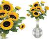 !Mwok sunflowers in vase