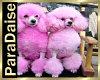 [PD] PinkyDino's Poodles