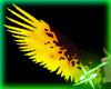 Lava Angel Wings